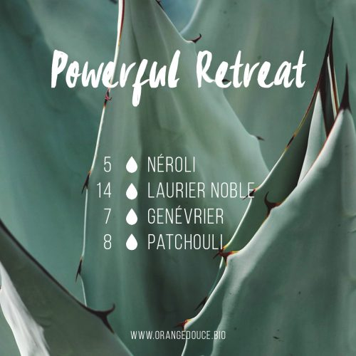 Powerful Retreat - synergie olfactive d'huiles essentielles